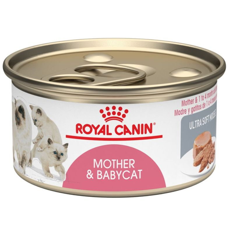 Royal Canin Mother o Babycat Wet 12x195g